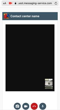 Calls - Switch between cameras
