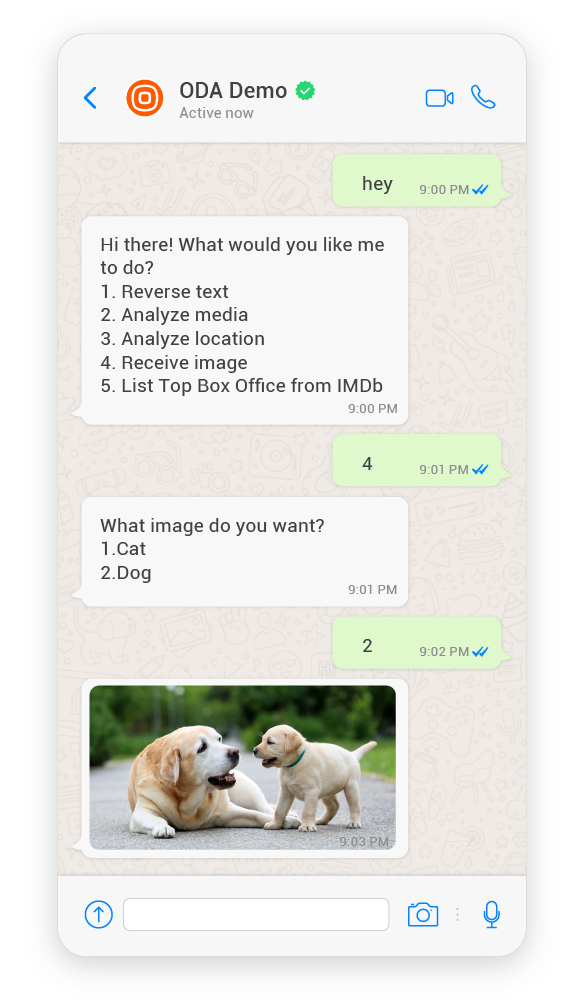 Oracle Digital Assistant over Infobip with WhatsApp